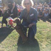 de Beauvoir dog show 2016